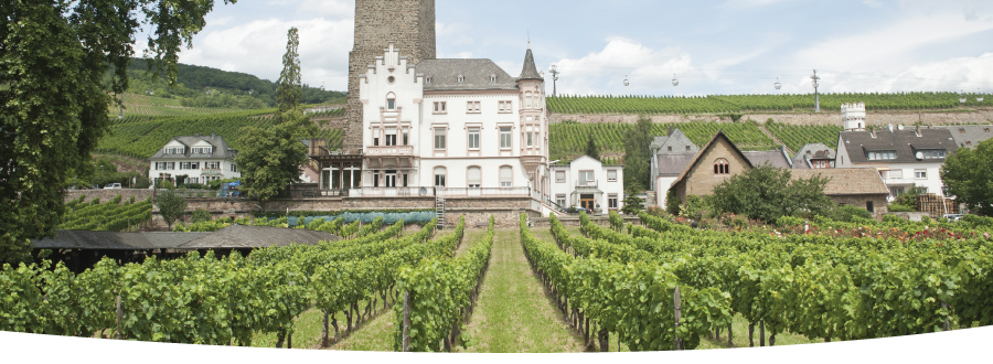 2-Nights Wines of Rudesheim